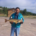 David Meekis caught this 11lbs walleye