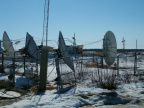 Fort Severn dish farm