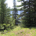 Looking out on Abram Lake from the clearing
