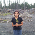 Here is Katrina Meekis holding a Low Sweet Blueberry plant.